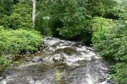 Downstream from bottom of Torrent Walk