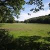 Meadow on the Torridge flood plain