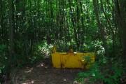 Burgh Wood