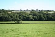 Heanton Punchardon: near Park Farm