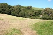 Heanton Punchardon: towards Ash Wood