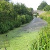 Grand Union Canal (Wendover Arm) in Drayton Beauchamp