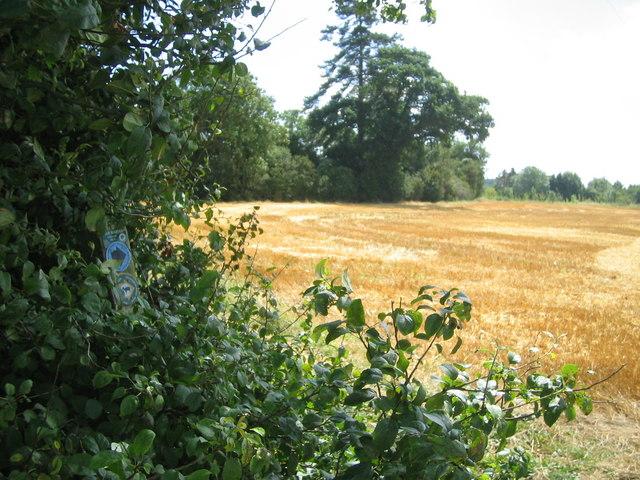 Sweetbrier Farm from Greensand Ridge Walk footpath