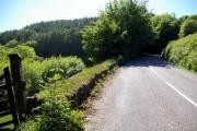 Road to Henstridge