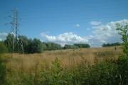Shirley Quarry Wood