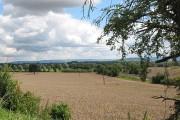Farmland off the A48