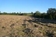 View Across Fields Towards Hallgate Lane