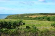 View of Morfa Common