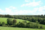 North Molton: above Withygate