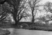 Maestermyn House Bridge No 4, Llangollen Canal