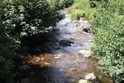 Afon Gwydderig