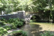 Grenofen Bridge over the River Walkham
