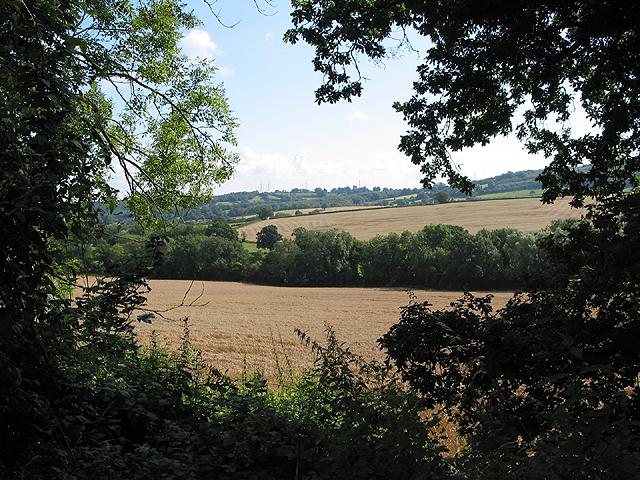 Farmland from Crews Hill