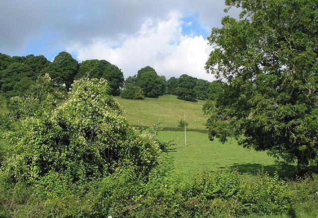 Hillside farmland near Barrel Farm