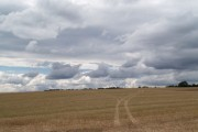 Field and sky.