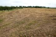 Farmland near Horncastle