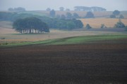 Across a ploughed field