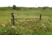 Overgrown gateway, Barfad