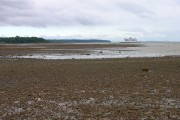 Shoreline near Quarr Abbey