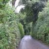 Lane to Bathpool