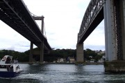 Between the Tamar Bridges