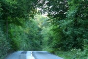 Brayford: Charlestown Barton Wood