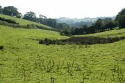 North Molton: near Larkrise