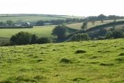 North Molton: on Fyldon Hill
