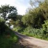 Lane past Bridge Farm