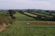 Farmland north of Sheepwash