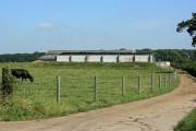 Farm off Dial's Gate Lane