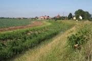 Farmland and drain near Holbeach Bank