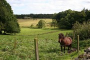 Potterton Home Farm