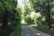 Road to Holbeach St Matthew