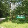 Haugh Woods