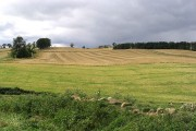 Farmland at Callaly