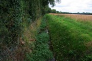Farmland near Darlton