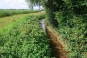 Field margin near Darlton