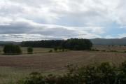 Farmland and Woodland near Fenton