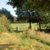 Field gate.