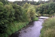 River from bridge