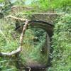 Raven Arch