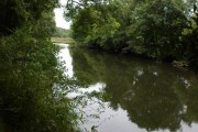 The River Torridge near Beaford