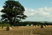 Straw bales and motorway traffic