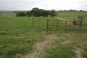 Farmland near North Heale