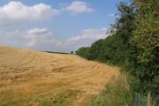 Farmland, Badger Hills