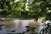River Taw below Gratleigh Wood