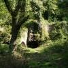 Landkey: old limekiln