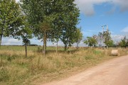 Farmland near the end of the road