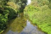 River Lee in Harpenden